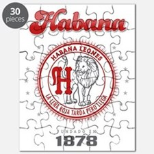 HabanaL1_Light Puzzle