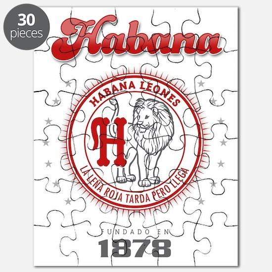 HabanaL1_Light Puzzle