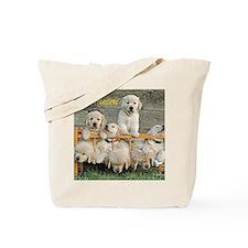 072305C 122_calender Tote Bag