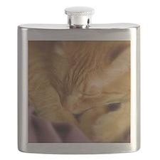 Tigers Aura Flask