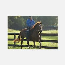 IRON HORSE PASO FINOS STARDAVID Rectangle Magnet