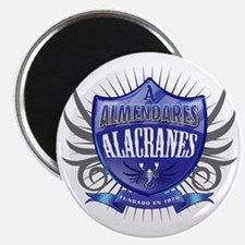 AlmendaresShield_Dark Magnet
