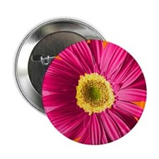 "pop-daisy_fuchsia_13-5x18 2.25"" Button"