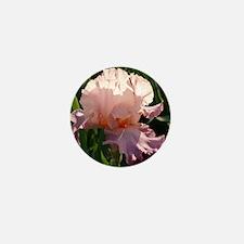 Pink and lavender Iris Mini Button