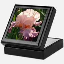Pink and lavender Iris Keepsake Box