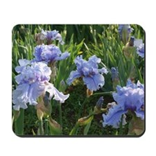 Delicate light blue irises Mousepad