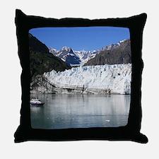 IMG_3592 - Copy Throw Pillow