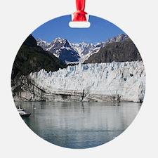 IMG_3592 - Copy Ornament