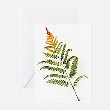 fern Greeting Card