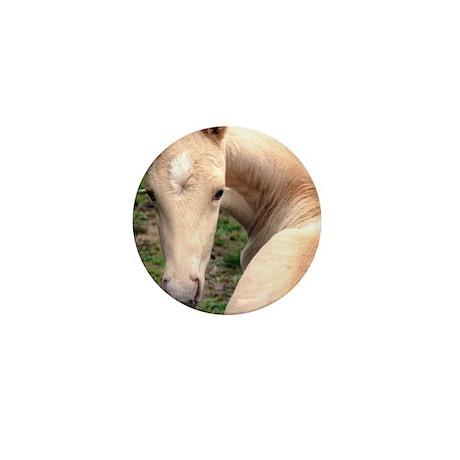 palomino_foal_panel Mini Button