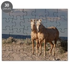 Matched Palominos Puzzle