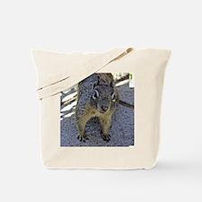 squirrel_rnd Tote Bag