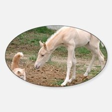 palomino_friends_smposter Decal