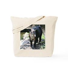 Copy of IMG_4445 Tote Bag