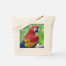 Copy of IMG_4828 Tote Bag