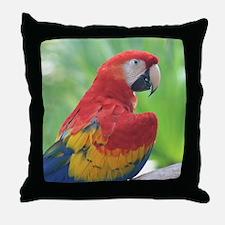 Copy of IMG_4828 Throw Pillow