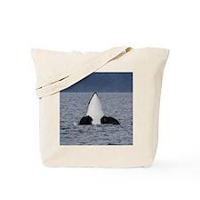 Copy of IMG_3496 Tote Bag