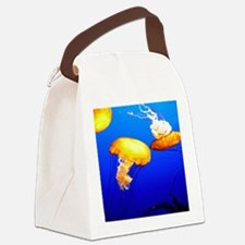 jellyfish blue marine peace and joy Canvas Lunch B