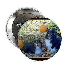 """2011 COVER CAL 2.25"""" Button"""