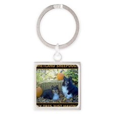 2011 COVER CAL Square Keychain