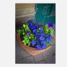 Purple Bouganvillea Postcards (Package of 8)