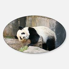 panda1 Decal