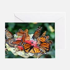 IMG_7966 Greeting Card