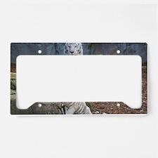 IMG_3748 License Plate Holder