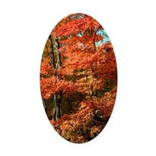autumn_lgp Oval Car Magnet