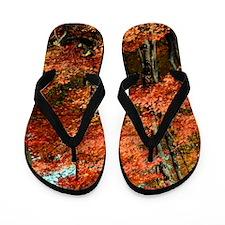autumn_lgp Flip Flops