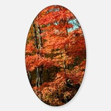 autumn_lgp Decal