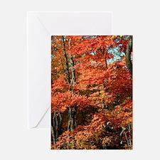 autumn_lgp Greeting Card