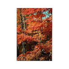 autumn_lgp Rectangle Magnet