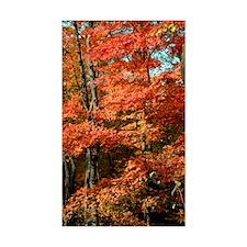 autumn_lgp Decal