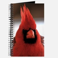 cardinal2_lgp Journal