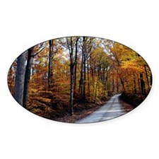 autumn_road_card Decal