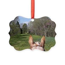 horse_ride_Lg_framed Ornament