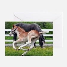 flying_roan_panel Greeting Card
