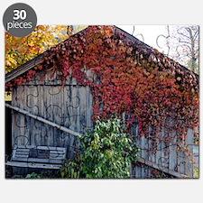 old_barn_Lg_framed Puzzle
