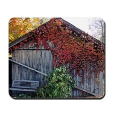 old_barn_Lg_framed Mousepad