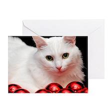 xmas_cat_rnd Greeting Card
