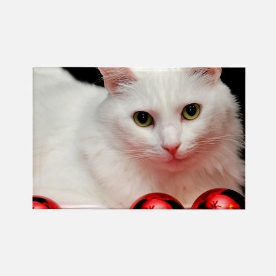 xmas_cat_rnd Rectangle Magnet