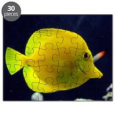 yellow_tang_mini Puzzle