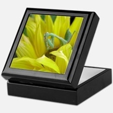 The Best Preying Mantis Keepsake Box
