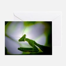Preying mantis Greeting Card