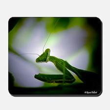 Preying mantis Mousepad