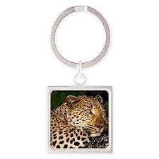 Leopard calander Square Keychain