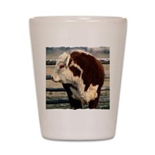 Bull Shot Glass