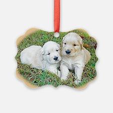 Golden Retriever Puppy Wall Calen Ornament