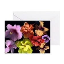 Hibiscus and more Greeting Cards (Pk of 10)